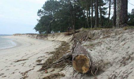 O Concello reúnese con Costas para demandar unha solución á perda de terreo na praia da Lamiña
