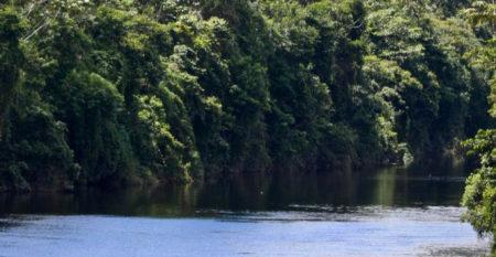 Expo Amazonía
