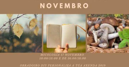 NP 06112018 A OMIX da Guarda oferta dúas novas actividades en novembro