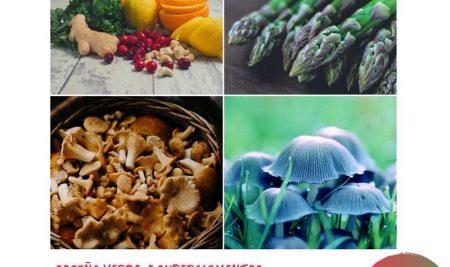 Obradoiro de Cociña verde e superalimentos e xornada de Micoloxía na Guarda